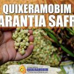 GARANTIA SAFRA  Quixeramobim é um dos primeiros municípios que já cumpriu as metas de pagamento das parcelas do Garantia Safra dentro do prazo