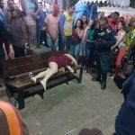 Mulher é morta a tiros por companheiro em praça no Crato