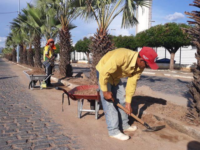 Secretário de Infraestrutura Ravy Ferreira fala sobre a limpeza dos bairros e poda das árvores de Quixeramobim