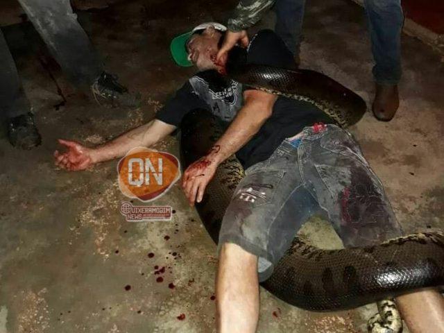 FATO OU BOATO? Homem é atacado e morto por cobra sucuri na zona rural de Aquiraz