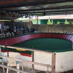 PMCE desativa rinha de galos que acontecia em sítio no Eusébio