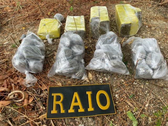 CPRaio da PMCE apreende quase 5,5 kg de maconha em terreno baldio em Quixadá