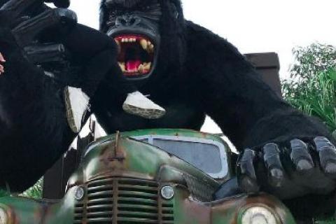 Criança que caiu de gorila do Beto Carrero World teria se desequilibrado durante foto, diz parque